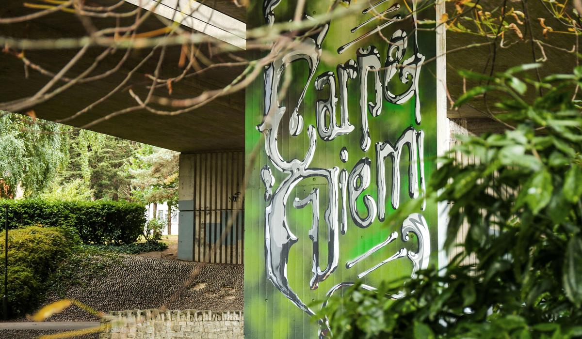 UPSIDE GALLERY street artist and graffiti artist murals in Bournemouth Bonzai